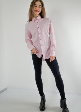 Акция paul shark розовая рубашка в полоску, полосатая рубаха, ...