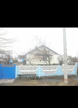 Дом в Киевской области, Згуровском  районе