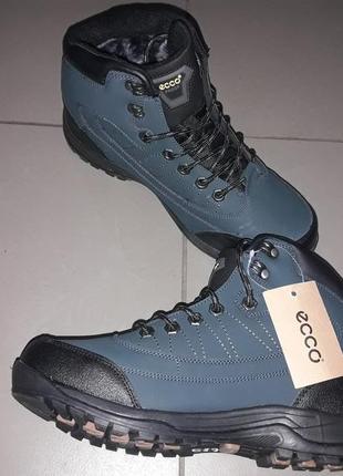 Ecco ботинки мужские зима зимние мех нат кожа термо мембрана в...