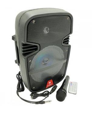 Портативная колонка радио караоке мобильная акустика Bluetooth...
