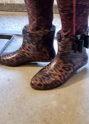 Гумаки резинові чоботи леопардові