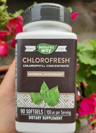 Хлорофилл, 90 капс., 100 мг, chlorophyll, хлорофил, Nature's way