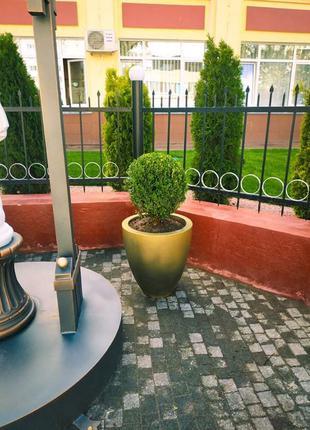 бетонный вазон для дома и сада