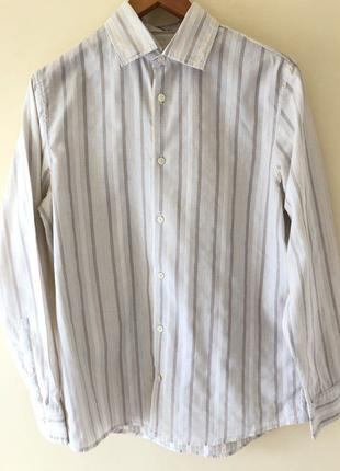 Бежево-Серая рубашка в полоску Calvin Klein