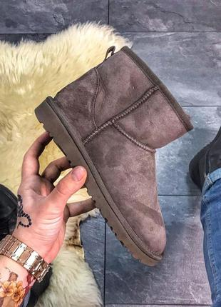 Стильные угги ugg classic 2 mini chocolate