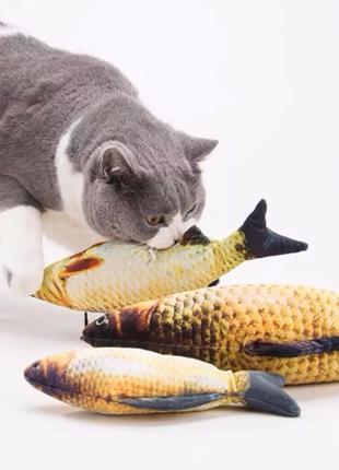 3D рыбки игрушки для кошек