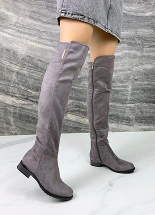 ❤ женские серые осенние демисезонные сапоги ботфорты  ❤