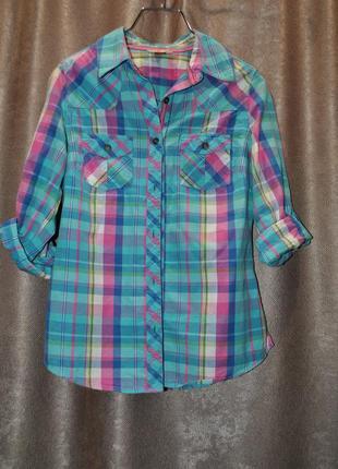 Рубашка голубая розовая клетка модная яркая качественная