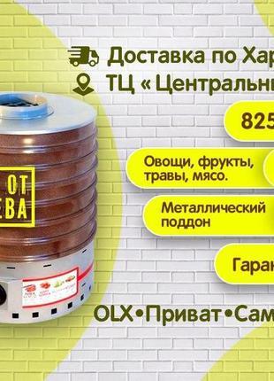 Сушилка для овощей и фруктов Profit, сушка на 20, 35литров