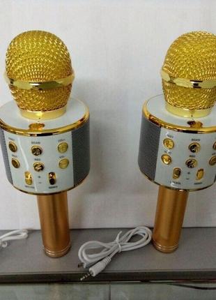 Микрофон беспроводной караоке Vster