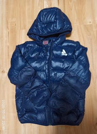 Цена дня!!!курточка на мальчика adidas
