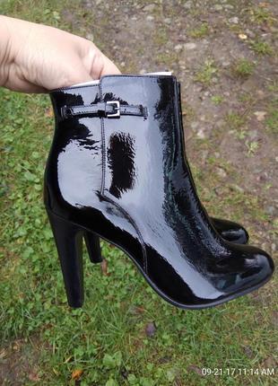 Ботинки 36 37 38 39 40-41 розмір бренд minelli
