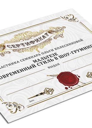 Эксклюзивный дизайн макетов дипломов и сертификатов Украина