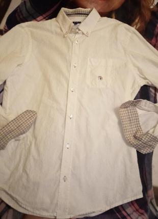 Trussardi jeans бавовняна сорочка