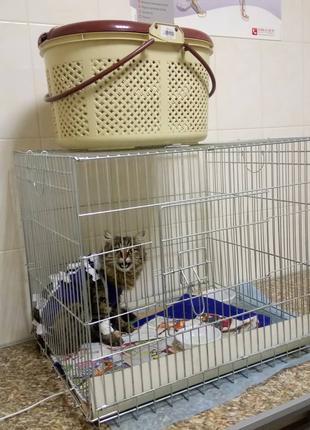 Переноска, манеж, домик, клетка №3, 63х50х53h для собак, кошек