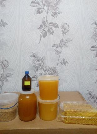Продам мед з власної пасіки, мед в сотах.