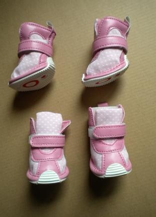 Обувь Puppia ботинки для собак р.4 взуття для собаки Pamd-sh067