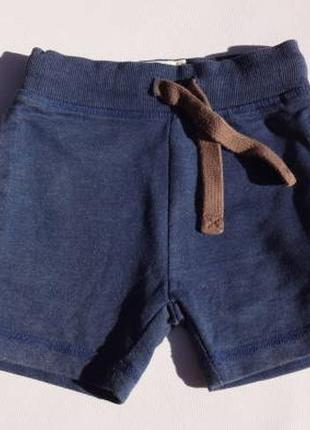 Next. тёплые шорты, петелька 12-18 месяцев на мальчика. синие.