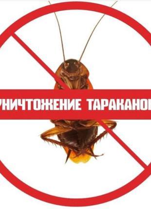 Уничтожение тараканов, клопов, клещей, блох Днепр