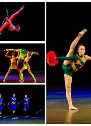 Художественная гимнастика, хореография, акробатика