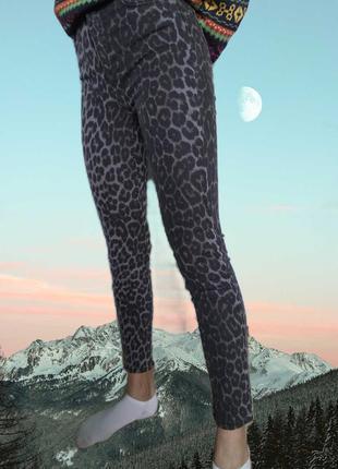 Актуальные джинсы с высокой талией zara /skinny/slim c леопард...