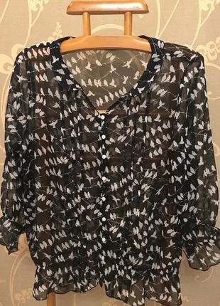 Очень красивая и стильная брендовая блузка в птичках.