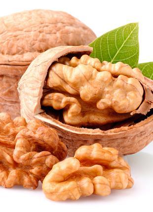 ядро шрецкого ореха