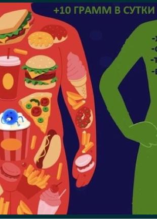 Клетчатка . Природный комплекс пищевых волокон