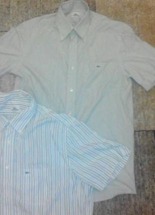 Рубашка Lacoste оригинал по биркам . поло tnf