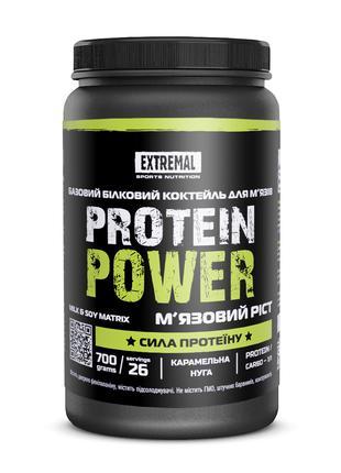 Протеин Protein power 700 гр (26 порций) базовый белковый коктейл