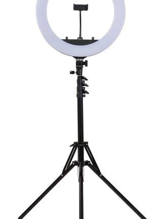 Профессиональная кольцевая лампа 45 см (d18) на штативе, с сумкой