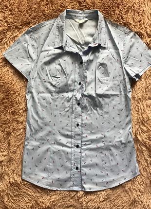 Новая голубая рубашка Ostin