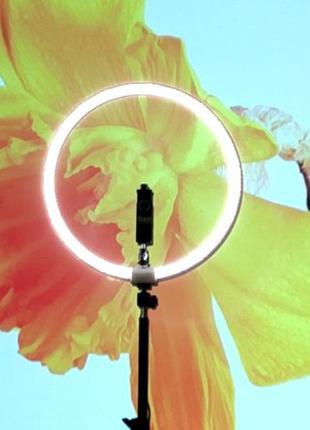 Световое кольцо. Кольцевая лампа. Led ring. Кольцевой свет, ст...