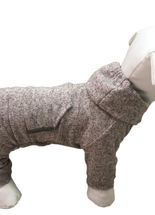 Одежда для собак костюм ангора