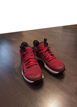 Баскетбольные Кроссовки Nike LeBron Witness 4