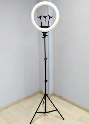 Кольцевая лампа 45 см JL-F348, кольцевой свет с пультом