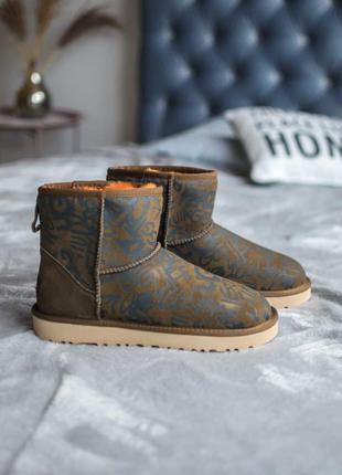 Ugg classic mini 🍏 зимние женские ботинки угги