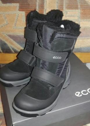 Зимние ботинки ecco biom hike