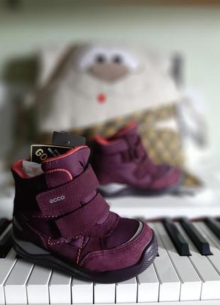 Зимние ботинки ecco urban