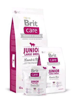 Brit Care (Брит Кеа) JUNIOR LARGE BREED Lamb&Rice 12 кг
