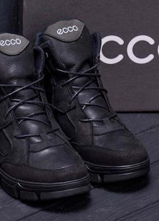 Зимние Кожаные Ботинки На Натуральном Меху Ecco