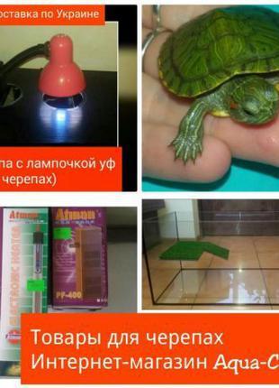 Товары для черепах : лампа, островки, террариумы. Доставка по ...