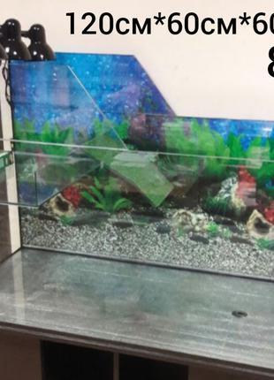 Черепаха красноухая : террариум 120-60-60,5, 8мм.Доставка по У...