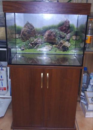 Низкая цена на новый комплект : аквариум с тумбой и крышкой на...