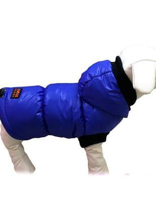 Одежда для собак Жилет электрик