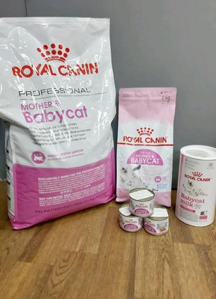 Royal Canin mother & babycat, роял канин для котят