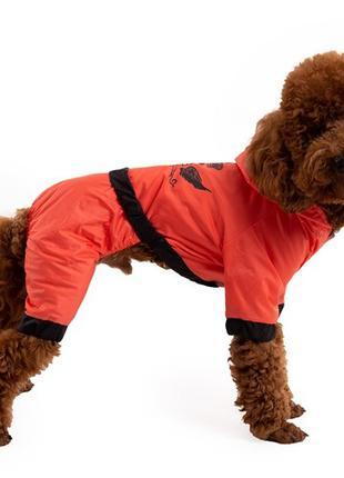 Одежда для собак дождевик оранжевый