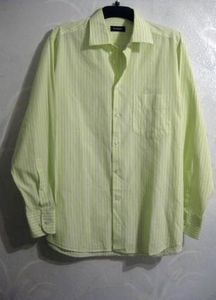 Мужская рубашка benvenuto жёлтая салатовая белая полоска
