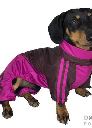 Одежда для собак дождевик для такс малиновый