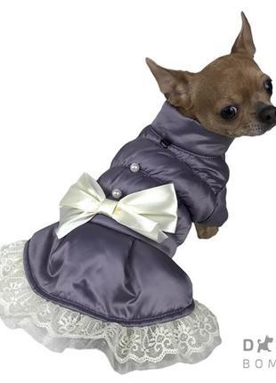 Одежда для собак куртка Рюша сиреневая